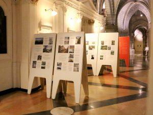 Exposición 40 aniersario Hispania Nostra en la Catedral de Tarazona. Fundación Tarazona Monumental.jpg