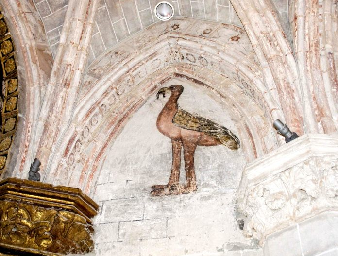 Avestruz. Catedral de Tarazona. Fundación Tarazona Monumental.